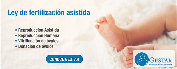 ley de fertilidad asistida, fertilizacion asistida ley, ley reproduccion asistida 2017, ley de fertilidad asistida 2017, ley de fertilidad asistida, ley de fertilizacion,